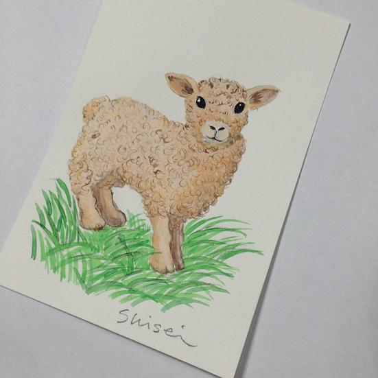 羊2.jpg